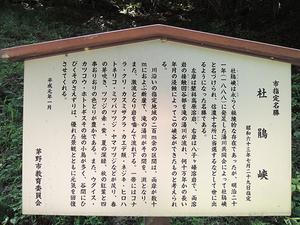 DSCN0569-8.JPG