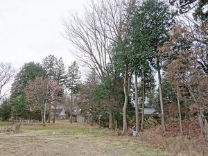 1602松川村_外観17北側道路から敷地.JPG