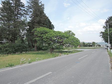 1602松川村_外11南側道路_西から東.JPG