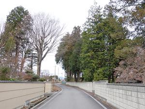 1602松川村_外15西側道路と塀.JPG