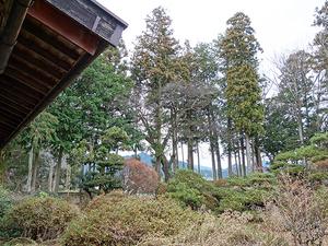 1602松川村_外観24庭園.JPG